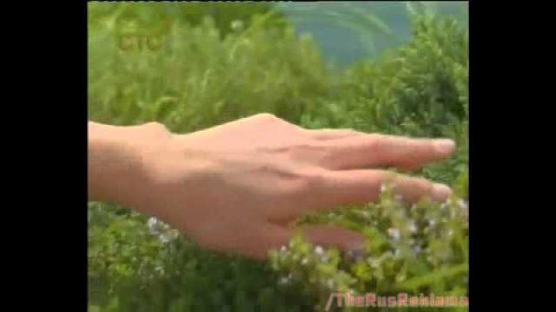 Реклама Palmolive Алтайские Травы 2014 - С Палмолив оживаю, как цветущий Алтай
