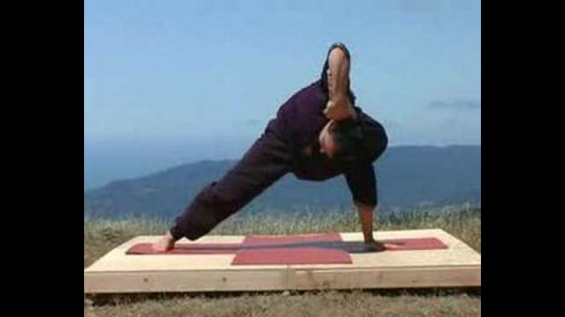 Universal Yoga Demo with Andrey Lappa