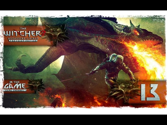The Witcher 2 Assassins Of Kings / Ведьмак 2 Убийцы Королей Прохождение 14 [Главоглаз]