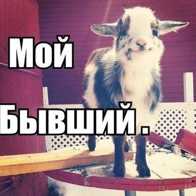 blyadi-novorossiysk-foto