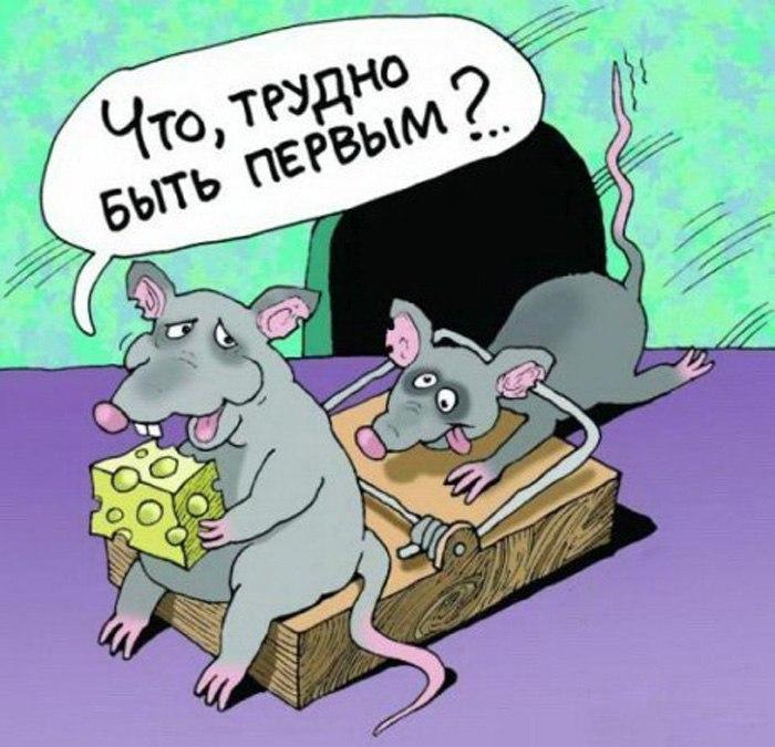 Предусмотрительность (соционика, Миронов)