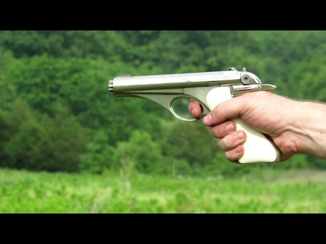 Shooting the Whitney Wolverine 22lr semi auto pistol nickel finish