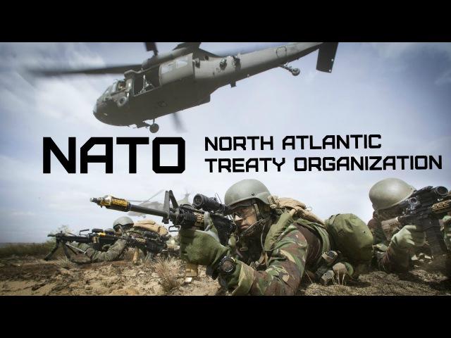 NATO • North Atlantic Treaty Organization • OTAN