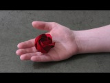 Origami Instructions Rose of Roses (Jordi Adell)