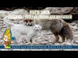Кот и лиса.Любимые русские сказки для малышей