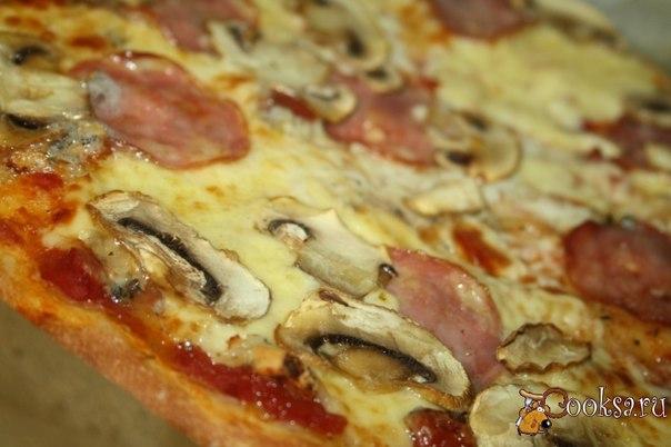 Пицца на дрожжевом тесте с сыром сулугуни и колбасой сальчичон Сочная, хрустящая, румяная и ароматная пицца на дрожжевом тесте с сыром сулугуни и колбасой сальчичон не оставит равнодушными ни взрослых, ни детей! Основа получается тоненькой, хрустящей! Обилие тянущегося, расплавленного сыра сулугуни дополняется ненавязчивой пикантной ноткой сыра с голубой плесенью. Такую пиццу хорошо подать с бокалом легкого, прохладного белого сухого вина, хотя и с пивом тоже будет неплохо!