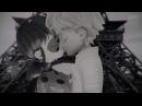 Noir x Lady [Miraculous LadyBug] - Any king of guy
