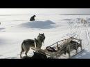 Счастливые люди   Енисей   Зима (серия 4)   Дмитрий Васюков