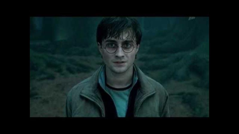Как жили мы, борясь... (История Гарри Поттера)