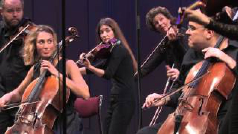 Camerata Nordica String Orchestra - Grieg