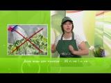 Как правильно поливать овощи (часть 1)
