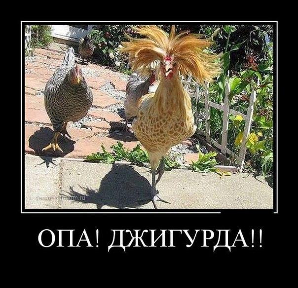 zMYcuQdqsMI - Идет старая бабка по улице а за ней мент. ...
