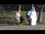 Прикол дня_ Араб и сумка