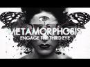 InsideInfo - Metamorphosis (feat. Miss Trouble) (Lyric Video)