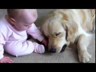Самое позитивное видео ребенок и собака, ПРИКОЛ))