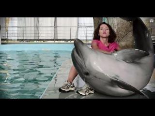 Дельфин афалина: секс, драгс, рок-н-ролл // Все как у зверей на Черном море