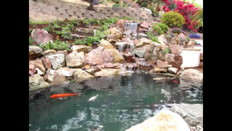 Koi Pond and Natural Rock Waterfall in La Costa, CA by San Diego Ponds