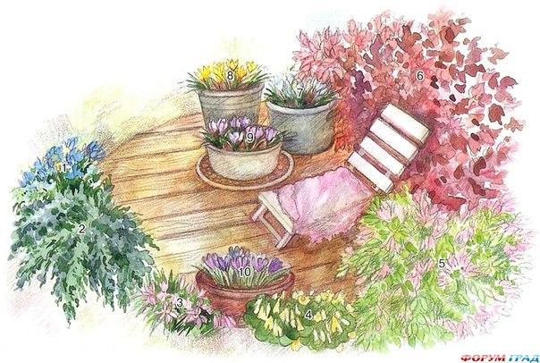 #идея #растения #схема