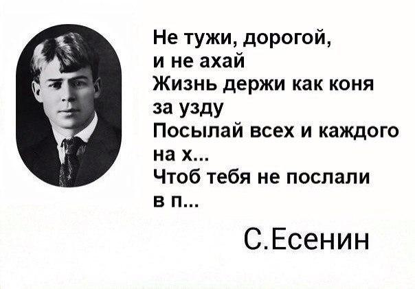 Тина Солнцева  