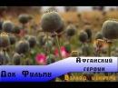 National Geographic Взгляд изнутри - Афганский героин / Inside Afghan Heroine HD 720p