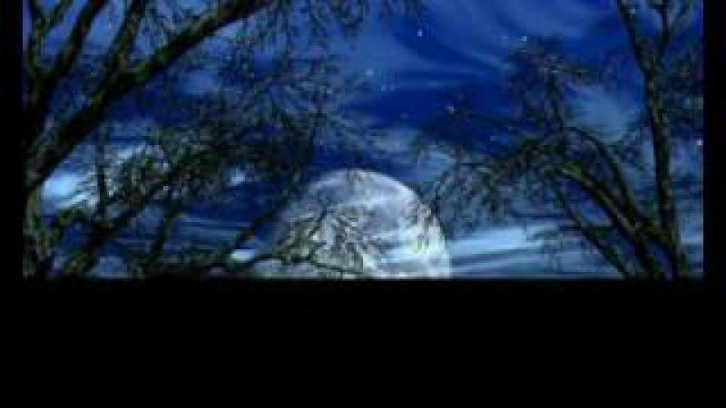 David Garrett Clair de Lune