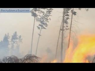 Площадь природных пожаров в Бурятии достигла рекорда года