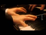 Beethoven Sonata N 29 'Hammerklavier' Daniel Barenboim