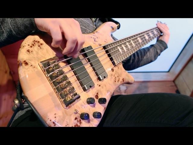 Pomegranate Tiger - Ocean - II. Maelstrom Bass Playthrough
