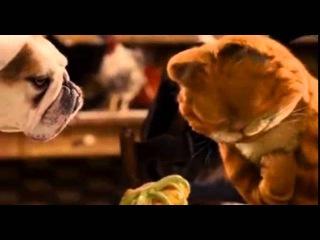 Фильм Гарфилд 2  История двух кошечек 2006 смотреть онлайн бесплатно