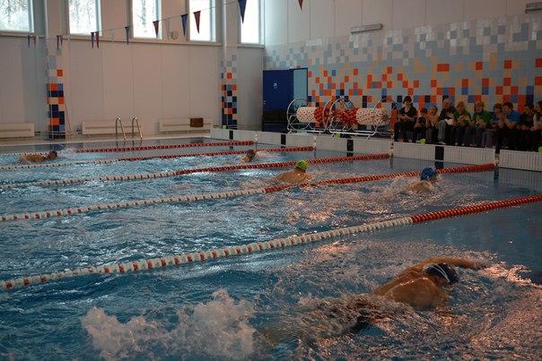 Соревнования по плаванию в Сухиничском районе