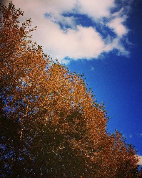 Песня лицей осень
