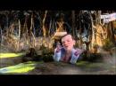 Сказочная Русь, 1 сезон, все серии | Мультфильм о сказочной жизни политиков Украины и других стран