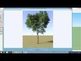 Настройки дерева в Скетчапе вирей (sketchup vray tree)