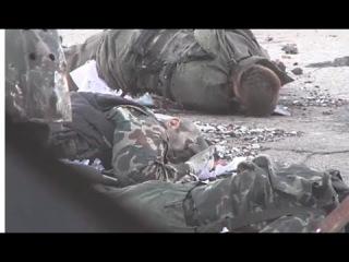 Донецкий аэропорт Ополченцы показали брошенные в терминале трупы киборгов