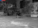 Seminario de Movimiento Acrobático y Equilibrio de Manos para Artistas Circenses