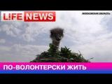 Корреспондент LifeNews в страусином питомнике помогает в уходе за птицами
