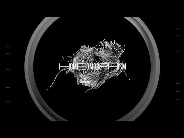 H OM E OMOR PH ISM_Dome A/V Performance