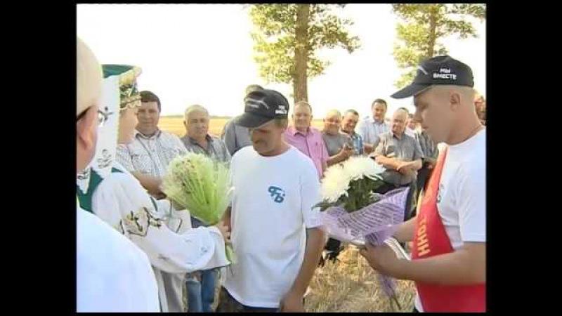 Дубровенский район впервые собрал 100 тысяч тонн зерна. 26-08-15