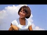 Песня Про Медведей - Наталья Варлей (А. Ведищева)  Full HD