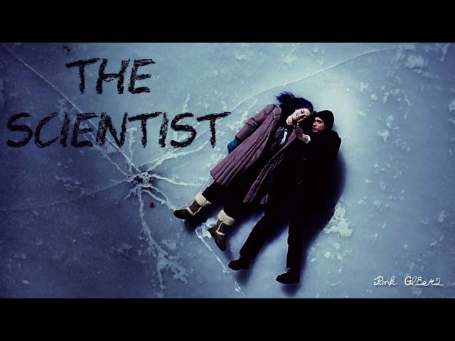 Eternal sunshine of the spotless mind   The scientist