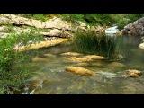 Крым , чёрная река. Crimea Black river. Лучшее видео чёрная река