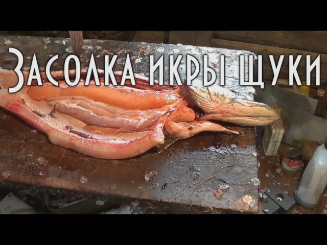 🍴 Горячая засолка икры щуки. Hot salting pike caviar