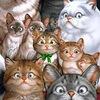 Кошек много не бывает ;)
