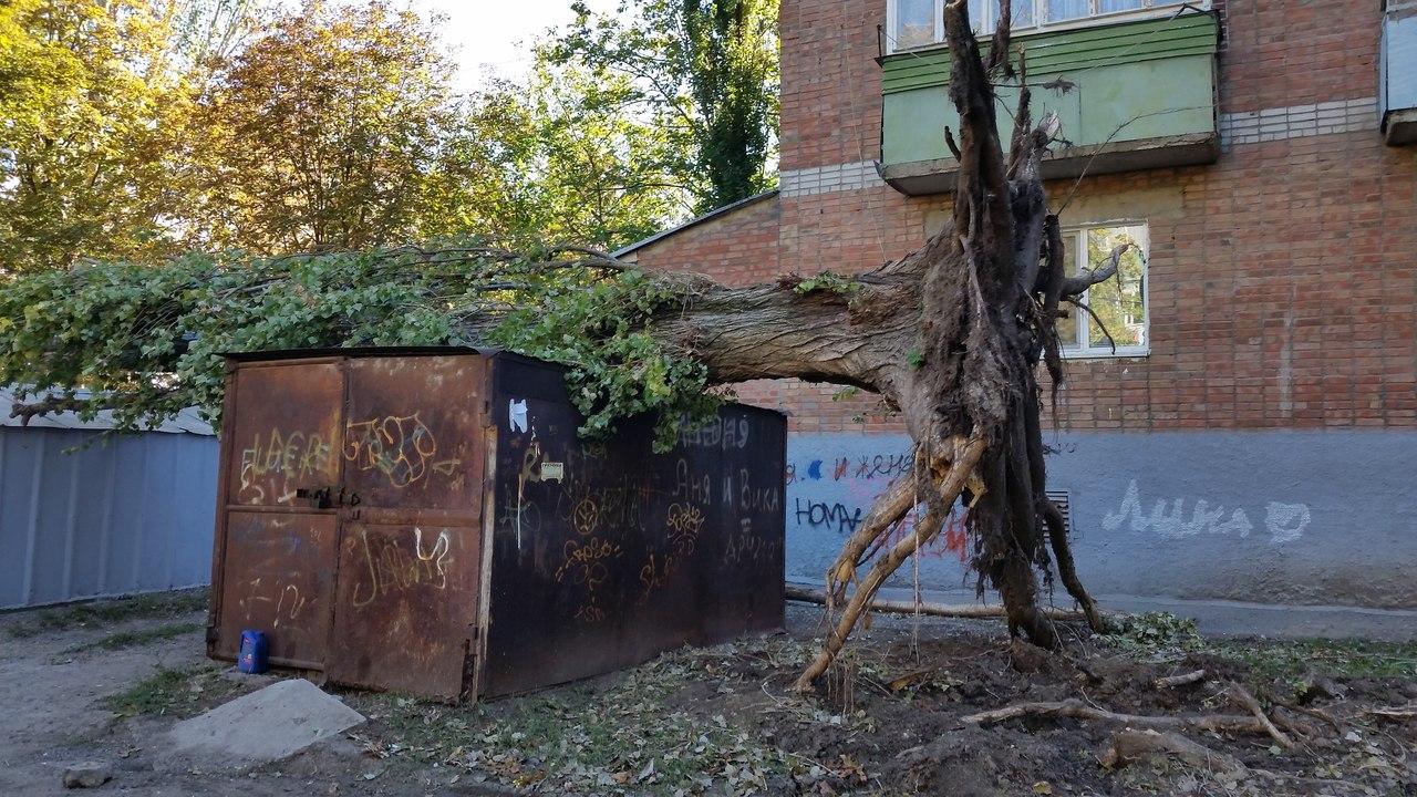 История о том, как городские власти помогают благоустраивать Таганрог