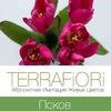 terrafiori_pskov