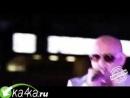 Pitbull_-_305_Till_I_Die