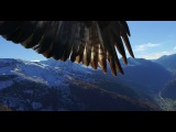 Phantom 3 get kidnapped by two eagles