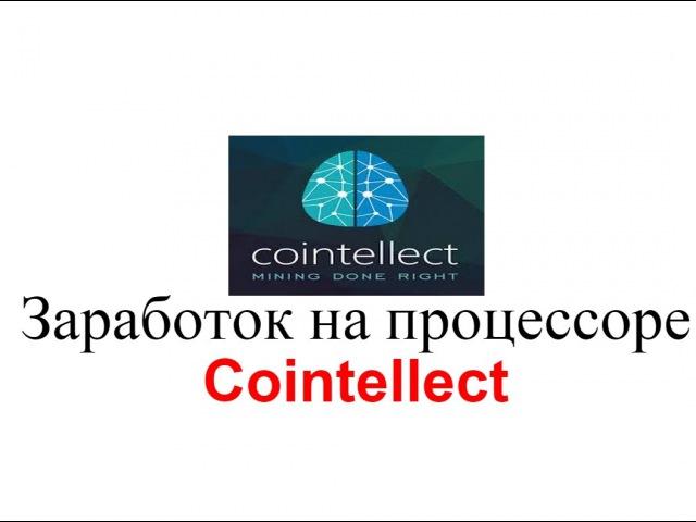 Заработок на процессоре с Cointellect, пассивный доход