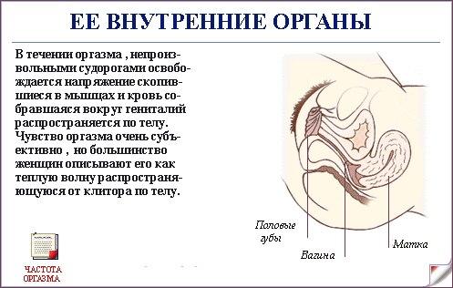 devushka-trahaet-sama-sebya-v-zhopu