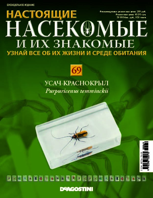 где можно купить насекомые и их знакомые